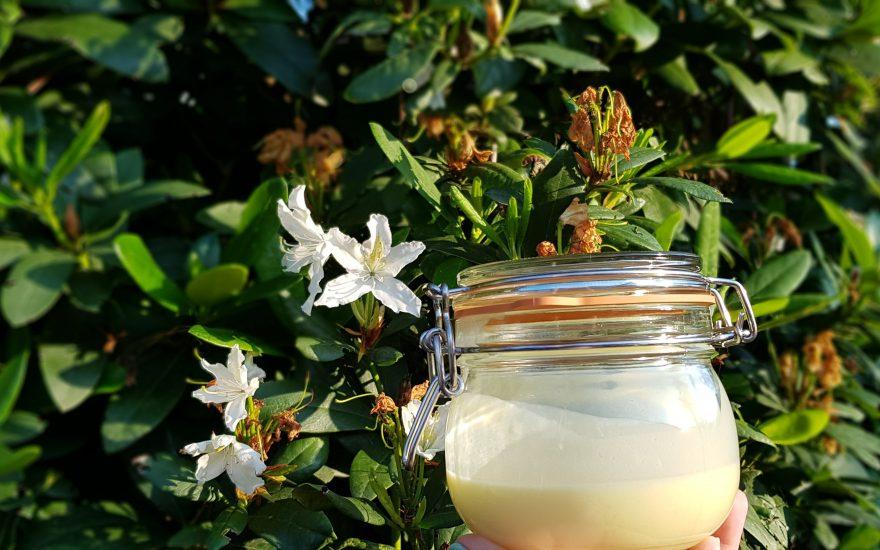 DIY natürliche Sonnenpflege & Schutz mit ätherischen Ölen