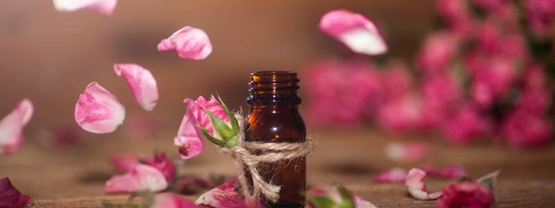 Aromapflege, Rosenöl, Rose, ätherisches Öl, Rosenblüten, Rosenblätter